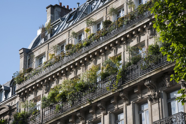 Balcons horticulture et jardins - Amenagement balcon paris ...