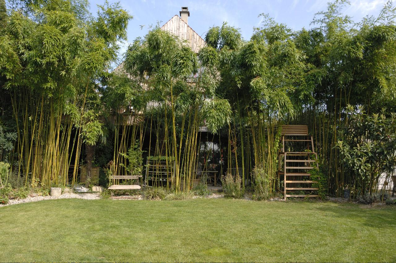 Le jardin d\'un paysagiste hédoniste - Horticulture et Jardins