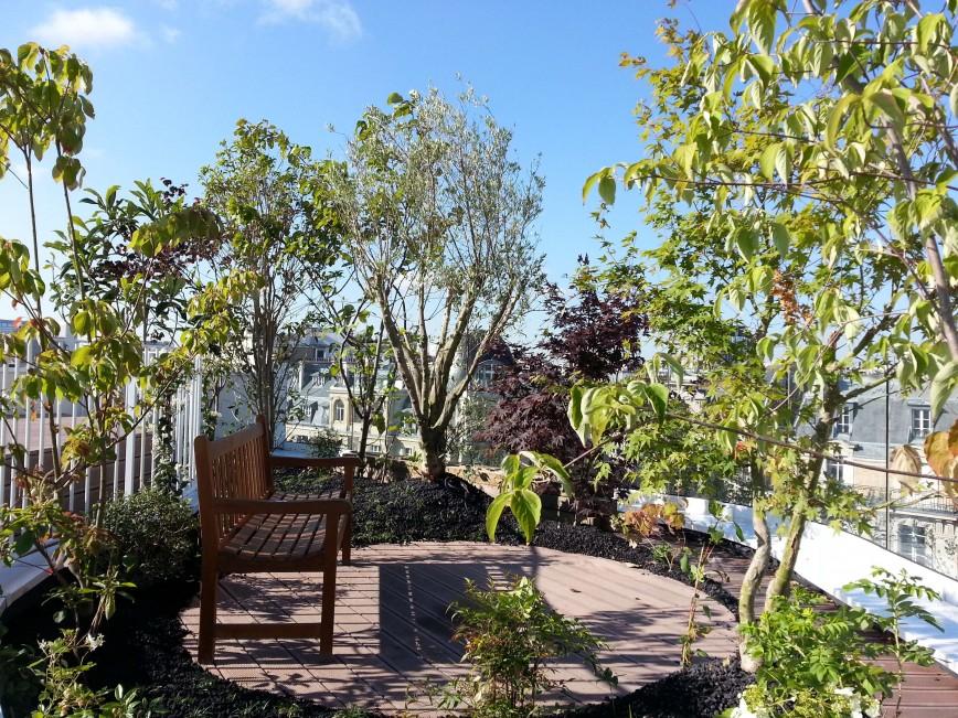 avant apr s terrasse horticulture et jardins. Black Bedroom Furniture Sets. Home Design Ideas