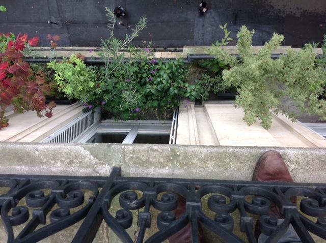 rebords de fen tres horticulture et jardins. Black Bedroom Furniture Sets. Home Design Ideas